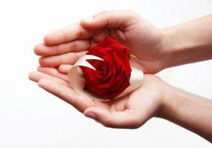 20080819001203-manosr-love.jpg