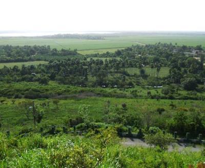 20120121020605-ecologia.jpg