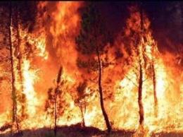 20120601074031-260px-incendios-23.jpg